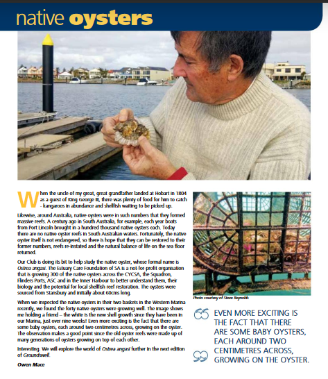 Article in CYC magazine Groundswell