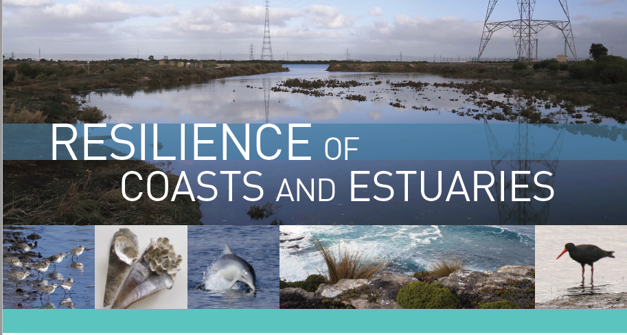 Resilience of Coasts