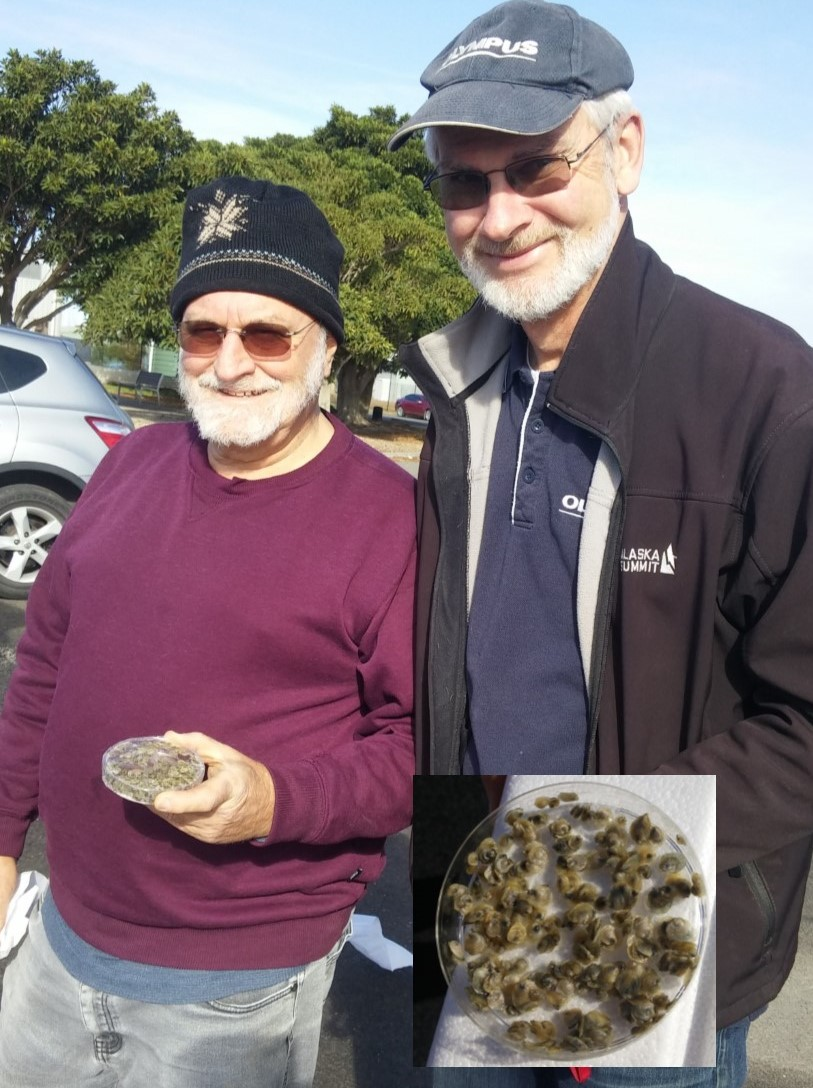 Members of the Port RIver Shellfish Restoration Project with spat in petrie dish