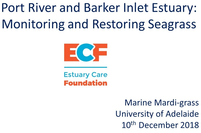 Opening title slide for presentation about Restoring and Monitoring seagrass in Port RIver & Barker Inlet Estuary