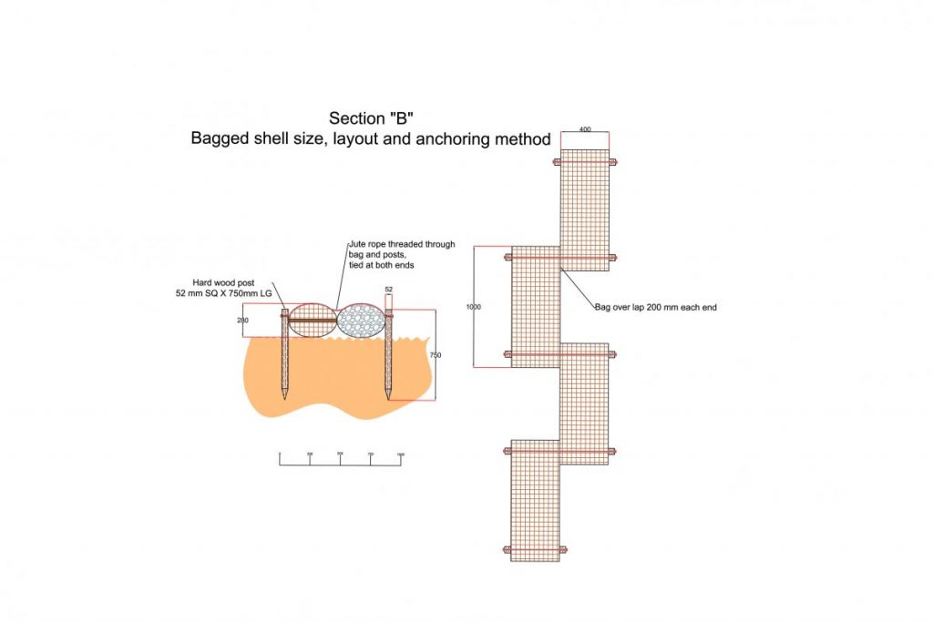 ECF trial showing bagged shell size, layout and anchoring method